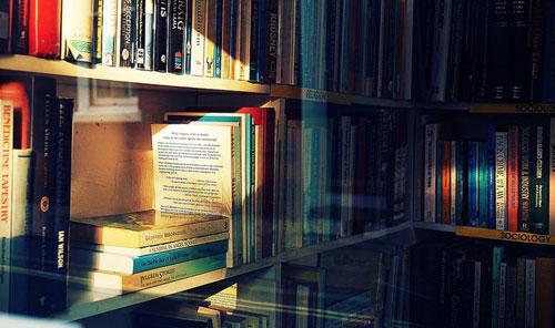 bookshelves in sunlight