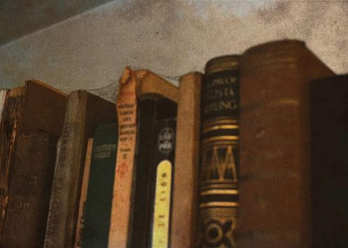 cobweb bookshelf