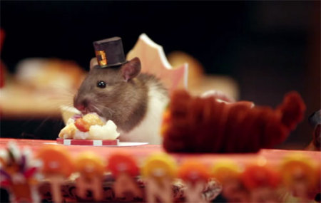 tiny hamster Thanksgiving